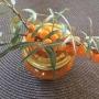 Rakytníková marmeláda