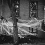 Do Brooklynu se blíží Halloween