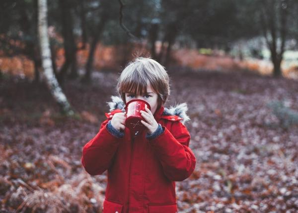 Podzim - čas dozrávání, sklizně a přípravy na zimu