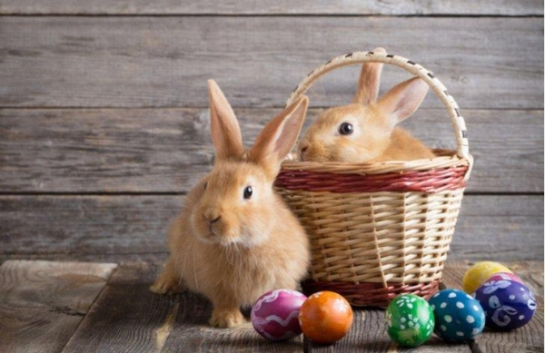 Tak trochu jiné Velikonoce