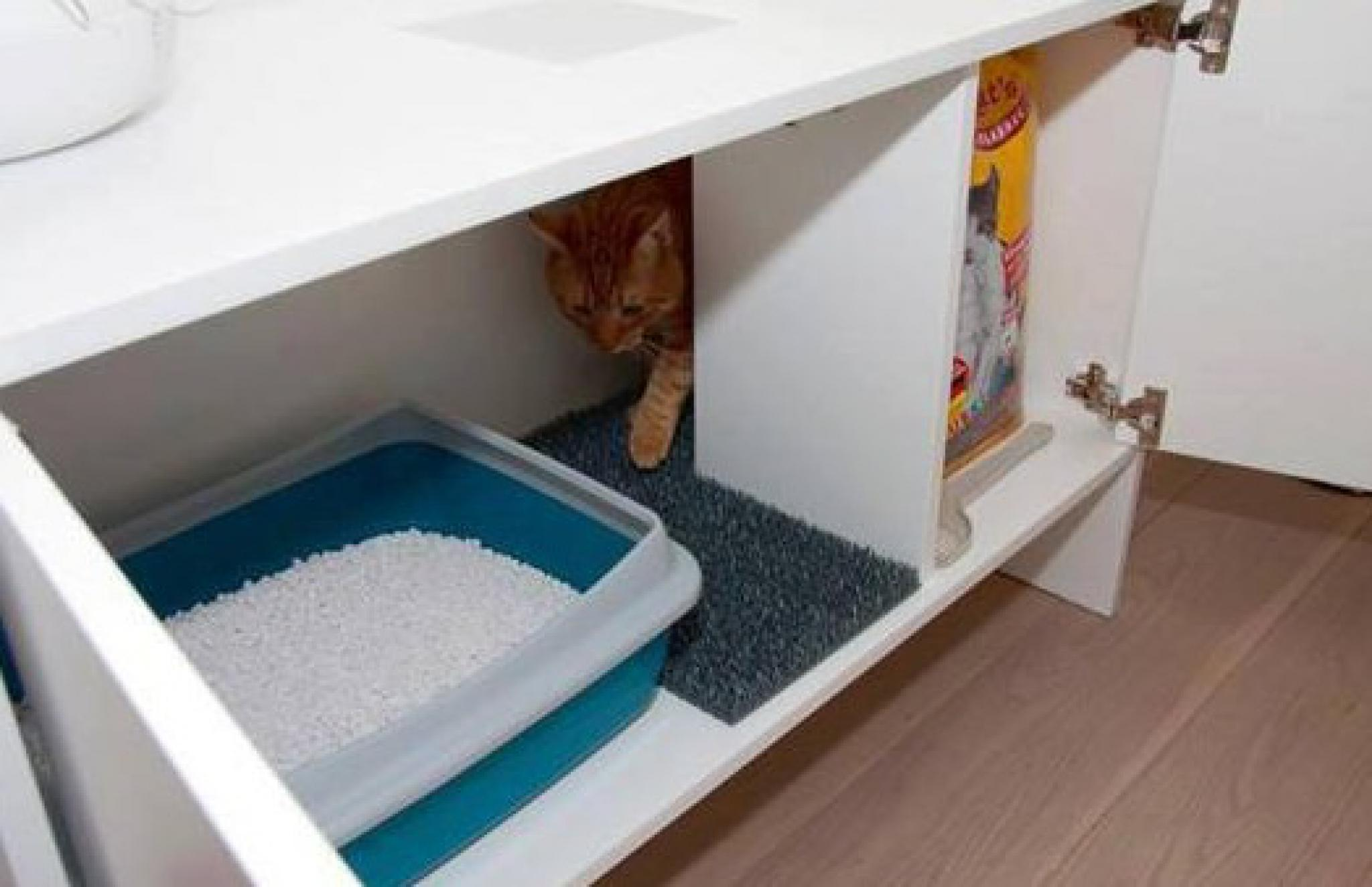 Туалет для кошки своими руками фото