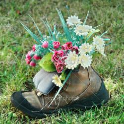 depositphotos_34405169-stock-photo-flowers-in-old-shoe-on.jpg